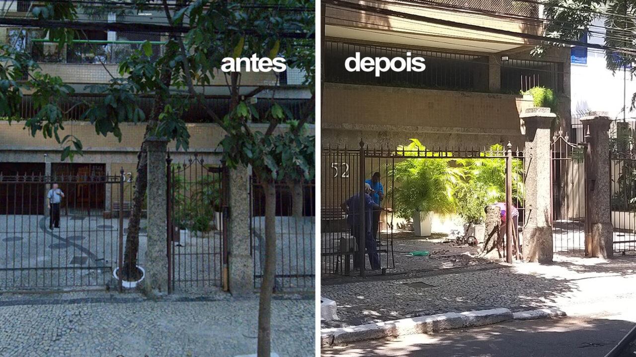 Árvore removida em edifício da rua das Palmeiras, Botafogo.