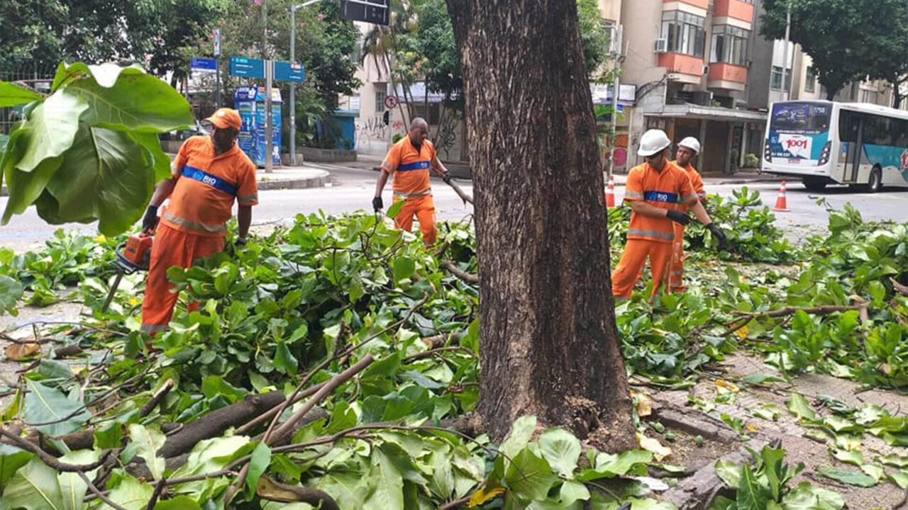 Árvore sendo removida na Voluntários da Pátria, Botafogo, frente a Cobal.